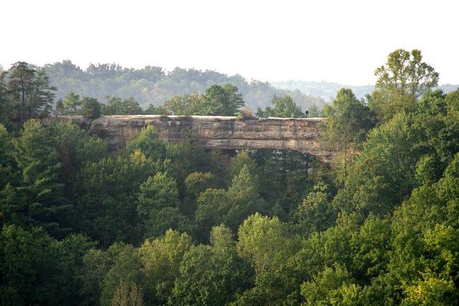 Natural Bridge est une falaise de 51 pieds à Slade, dans le Kentucky, dans le parc national de Natural Bridge qui a été sculptée par une crique voisine en un pont parfait.