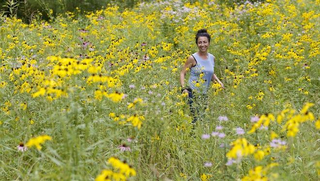 Sarah Wolff avec Olmsted Parks Conservancy donne une visite d'une grande prairie récemment restaurée dans le parc Cherokee.  8 juillet 2016