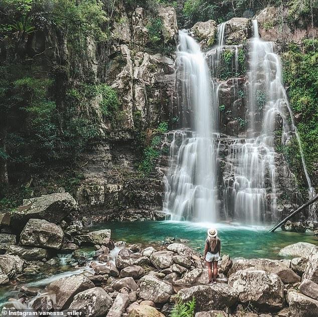 La forêt tropicale de Minnamurra est à seulement deux heures de route au sud de Sydney et située dans le parc national de Budderoo