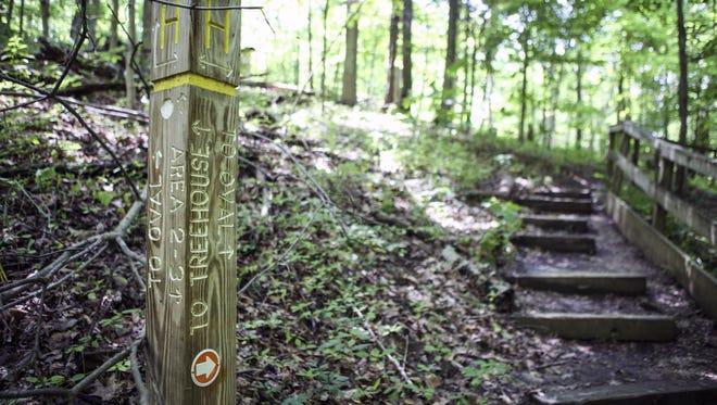 Mount Airy Forest, qui couvre près de 1500 acres, fait partie du système de parcs de Cincinnati.  C'est l'une des plus grandes forêts urbaines d'Amérique, mais une grande partie de ses sentiers sont fermés.