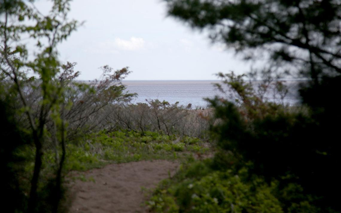 Un petit éperon du sentier Park Point offre une vue panoramique sur le lac Supérieur le 25 mai 2021. De nombreux éperons le long du sentier offrent une vue à la fois sur le lac Supérieur et le port Duluth-Superior.  (Samantha Erkkila/serkkila@duluthnews.com)