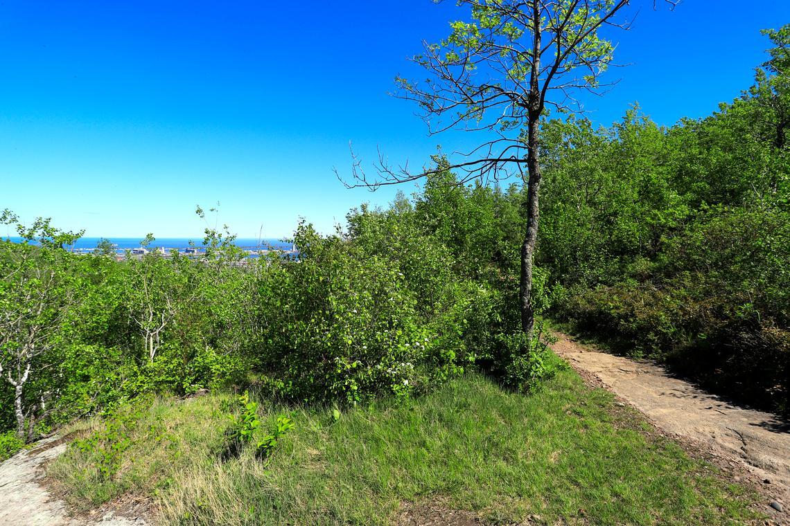 Des vues sur le lac Supérieur peuvent être vues à différents points le long de la boucle Home Brew à Brewer Park dans le quartier Cody de Duluth.  (Adelle Whitefoot / awhitefoot@duluthnews.com)